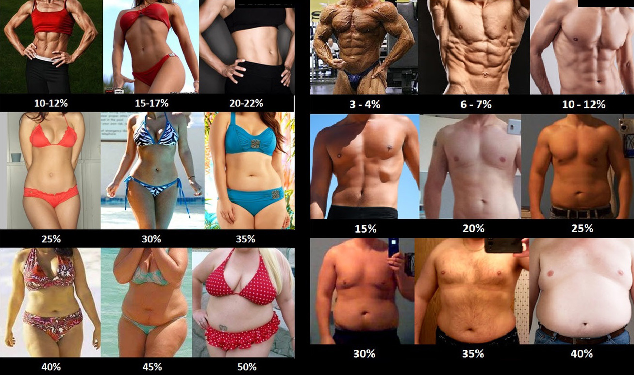 body-fat-percentage1